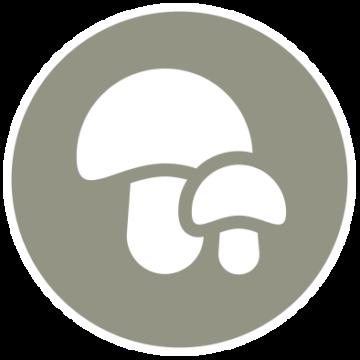 ICONA_antimuffa